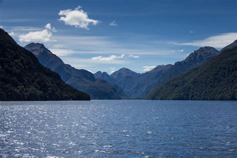 Doubtful Sound with Real Journeys, NZ | Cooking in Tongues